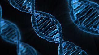 Minderheiten unter Verdacht: Radial Profiling und erweiterte DNA-Analysen (Foto CC, Pixabay via Wikimedia)
