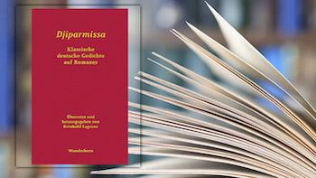 Buchcover - Djiparmissa